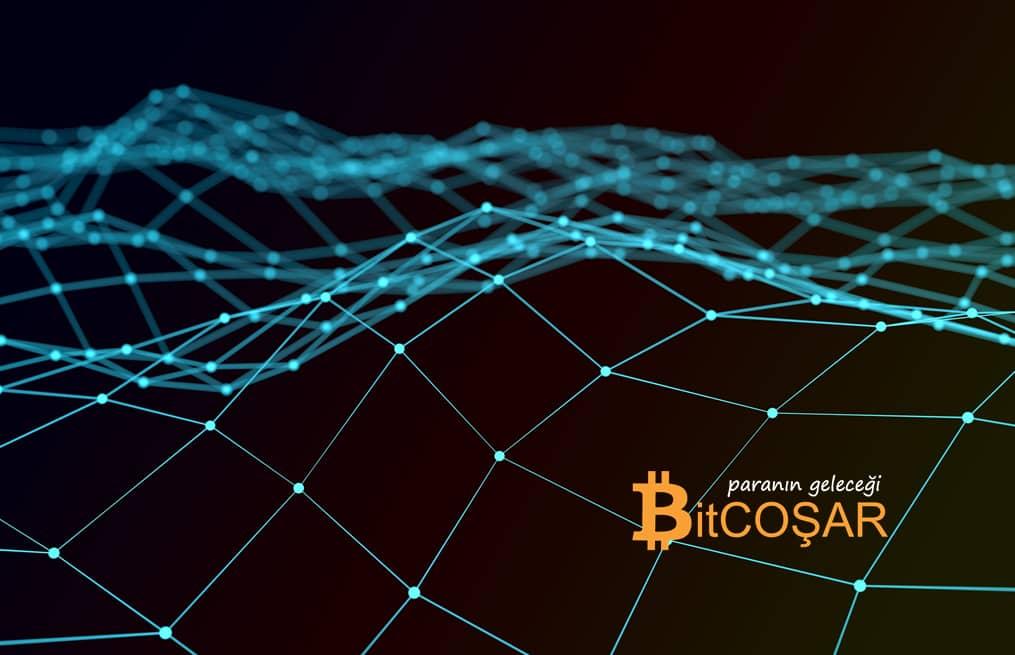 Blockchain Girişimleri