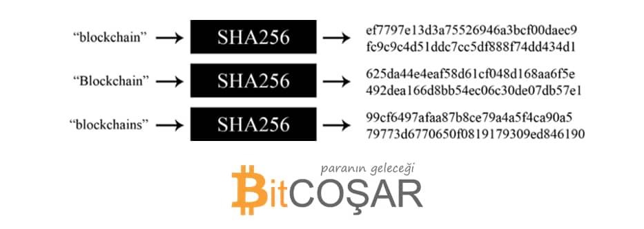 Blockchain Nedir? 2 - sha256 algoritmasi