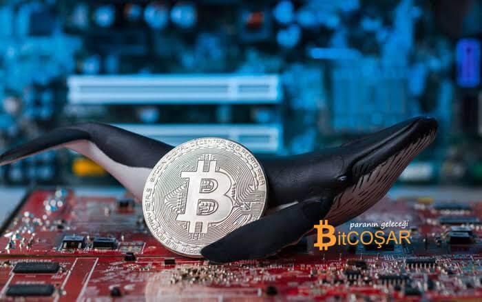 milyon dolarlık bitcoin işlemi
