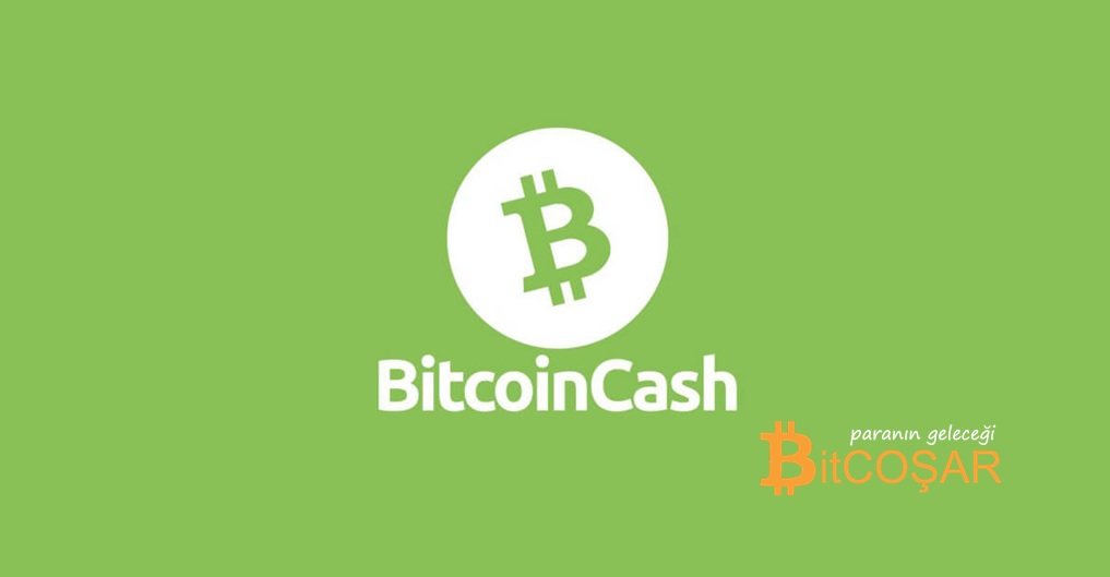bitcoin cash halving